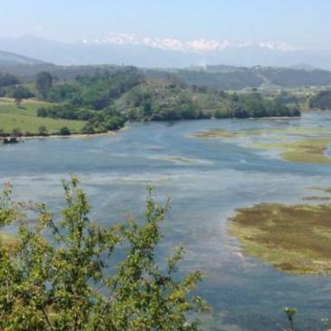 Cantabria Landscape
